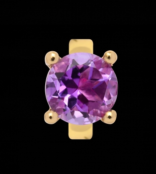 Endless Jewelry Gold Element Charm Round Amethyst lila 25353